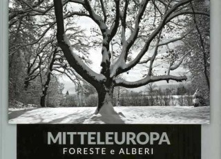 Mitteleuropa1