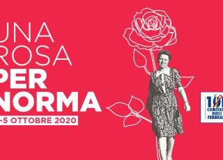 Cover Rosa Per Norma