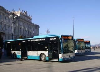 Bus Trieste Piazza Unita